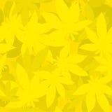 Lame de cannabis Photographie stock libre de droits