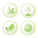 Lame de graphisme d'Eco illustration stock