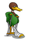 Lame Duck Using Crutch Royalty Free Stock Photos