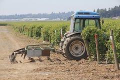 Lame et tracteur de boîte Image libre de droits