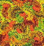 Lames ashberry d'automne Photographie stock libre de droits