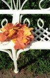 Lames d'érable d'automne sur le banc Photographie stock