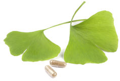Lames d'arbre de Ginko avec des pilules Photographie stock