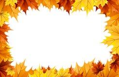 Lames d'automne   Images stock