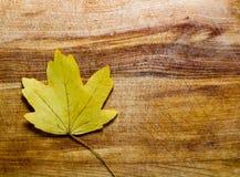 Lames d'automne au-dessus de fond en bois Photo stock