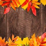 Lames d'automne au-dessus de fond en bois Image stock