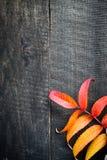 Lames d'automne au-dessus de fond en bois Images stock