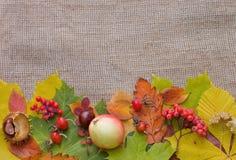 Lames d'automne au-dessus de toile de jute Image libre de droits