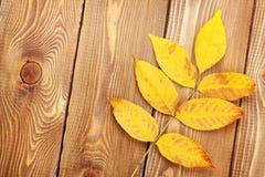 Lames d'automne au-dessus du fond en bois Photographie stock