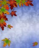 Lames d'automne d'automne et cadre de ciel Image stock