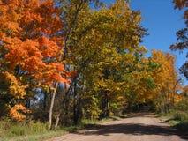 Lames d'automne dans l'â 04_10_2_034 d'horizontal Image libre de droits