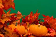 lames d'automne de cadre Image libre de droits