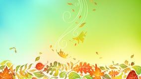 Lames d'automne en baisse Photo stock