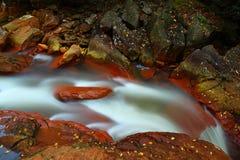 Lames d'automne sur la cascade à écriture ligne par ligne Photo libre de droits