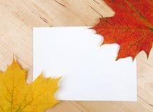 Lames d'automne sur la feuille de papier Photographie stock libre de droits