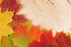 Lames d'automne sur le fond en bois Photo stock
