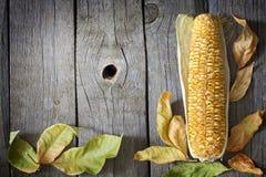 Lames d'automne sur les panneaux en bois avec du maïs Images stock