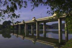 Lames de bambou encadrant la passerelle de lac photo stock