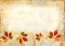 lames de grunge d'automne de fond Photos stock
