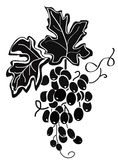 lames de raisins illustration libre de droits