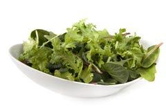 Lames de salade Images stock