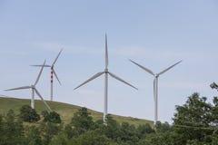 Lames de vent sur les collines douces Photo stock