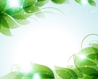 Lames de vert sur un fond bleu Photos libres de droits