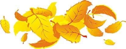 Lames en baisse d'automne Photos stock