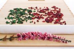 Lames et fleurs de thérapie d'arome Photographie stock