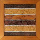 Lames et graines d'haricots horizontales Photo libre de droits