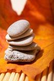 Lames et pierres d'automne Photo stock