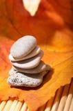 Lames et pierres d'automne Image stock