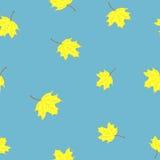 Lames jaunes d'érable Photo libre de droits