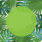 Lames tropicales Trame carrée Illustration Stock