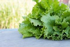 Lames vertes de laitue Feuilles de laitue sur le fond en bois Laitue fraîche sur la table de cuisine Aliment biologique sain Images stock