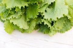 Lames vertes de laitue Feuilles de laitue sur le fond en bois Laitue fraîche sur la table de cuisine Aliment biologique sain Images libres de droits