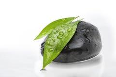 Lames vertes sur la pierre noire Photos stock