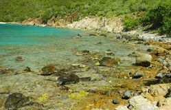 Lameshur Bay Reefs, St. John Royalty Free Stock Images