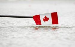 Lamierina canadese immagine stock libera da diritti