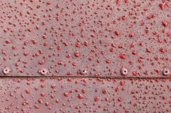 Laminado con alivios rojos Fotografía de archivo