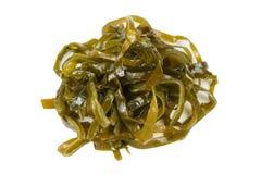Laminaria (Kelp) Seaweed Isolated on White Background Stock Photography