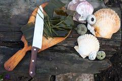 Laminaria - Meerespflanze schnitt auf Stücke. Stockbilder