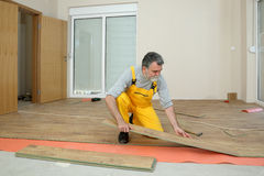 Laminate flooring of room. Adult male worker installing laminate floor, floating wood tile royalty free stock image