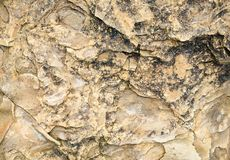Laminated rocky surface from the riverbed of the mountain river Royalty Free Stock Photo