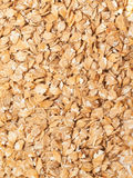 Lamination barley background. close up Stock Images