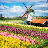 Laminatoi di vento olandesi Fotografia Stock