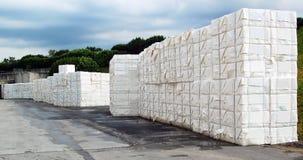 Laminatoio della pasta-carta e della carta - cellulosa Fotografia Stock Libera da Diritti
