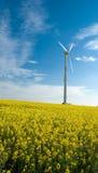Laminatoio ventoso. Fotografia Stock Libera da Diritti