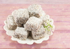 Lamingtons on a plate royalty free stock images