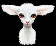 Lammdjuret behandla som ett barn Arkivbilder
